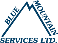 blue-mountain-service Logo